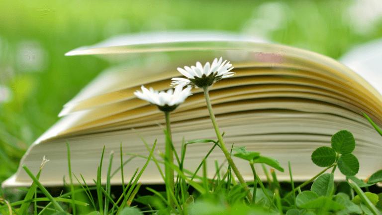 4 Inspiring Books to Jump-Start Happiness