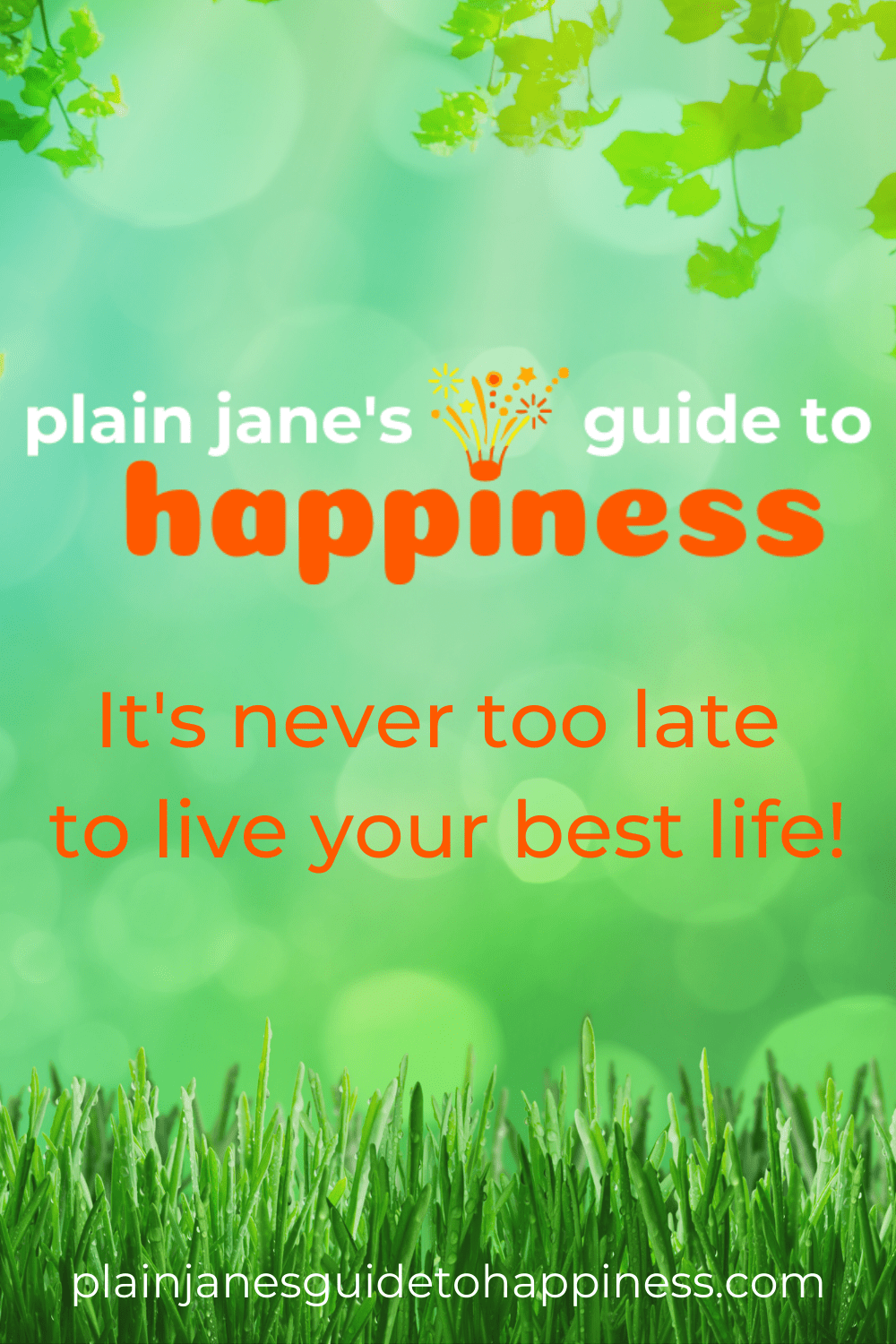 Plain Jane's Guide to Happiness. Your time is here. Every day is a new day, brimming with potential. How will you use it? What are you waiting for? It's never too late to live your best life. via @plainjanesguidetohappiness